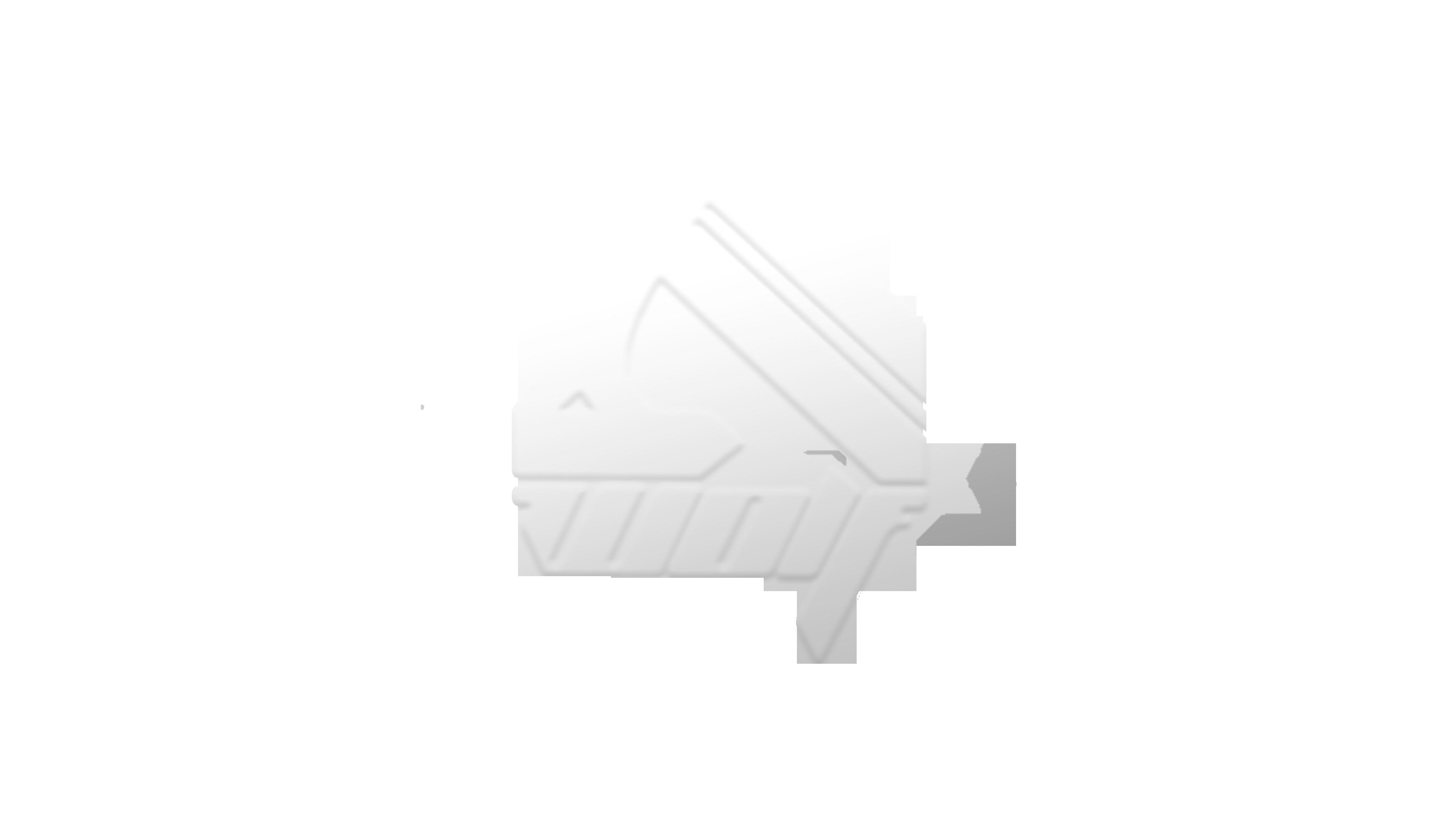 Dwolf Studio Logo